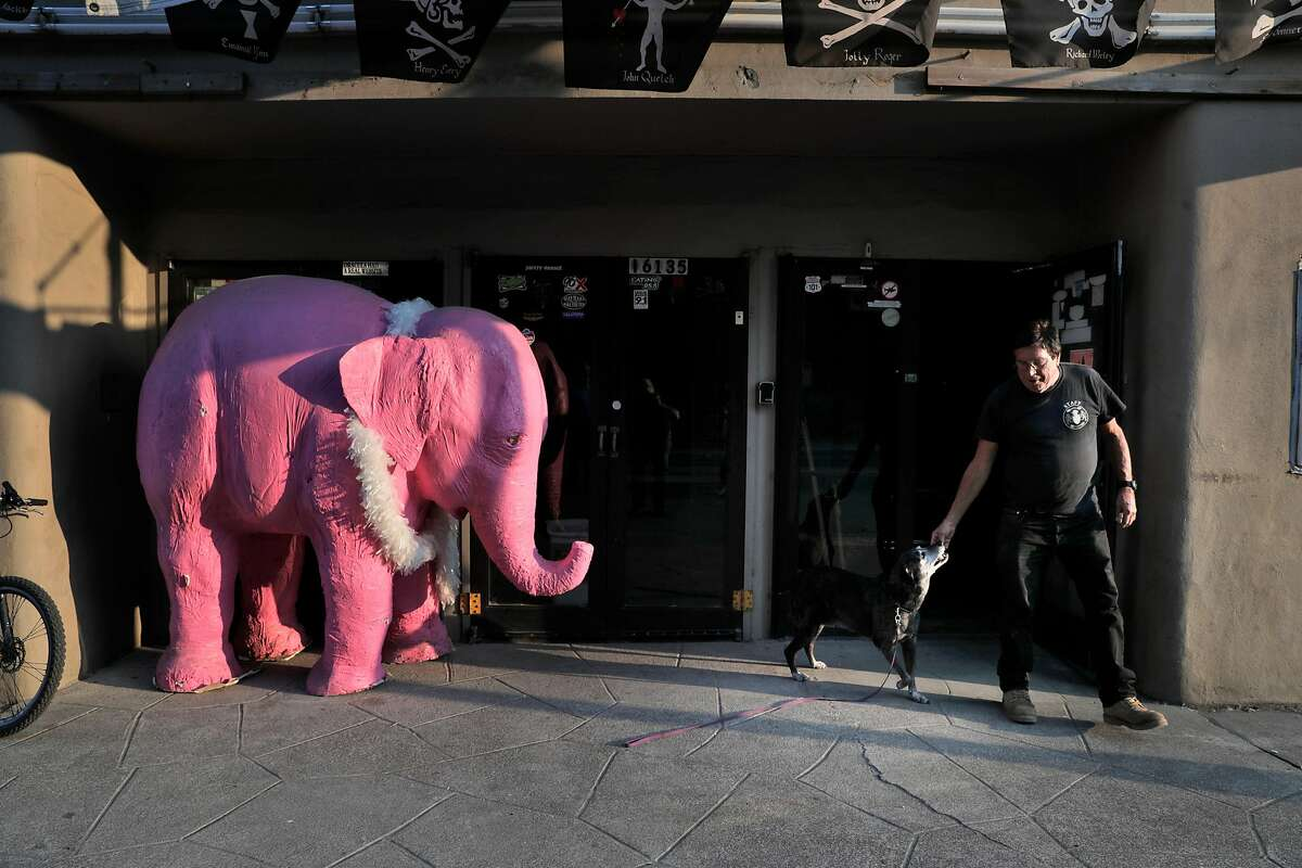 Jerry Knight, owner of the River Theater outside the theater after moving his pink elephant Bubbles closer to the door as the local fires continued to keep people from returning to their home in Healdsburg, Calif., on Monday, August 24, 2020. Knight stayed and kept his radio station going as a public service and a place for firefighters to rest if they needed a break.