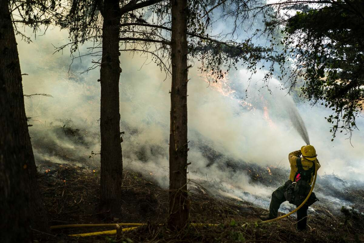 Battling the Dolan Fire along the central California coast, Los Padres National Forest fire fighters implement a