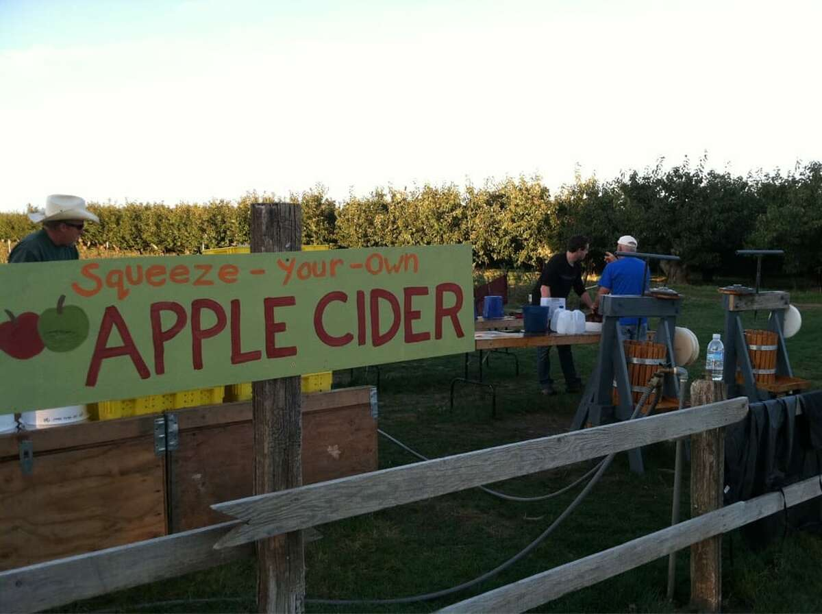 A small family farm located in the Yakima Valley in Eastern Washington, Bill's Berry Farm is currently dishing out Gala and Ruby Macintosh apples alongside raspberries, blackberries and peaches. Open Monday-Thursday, 4 p.m.-8 p.m., and Friday-Saturday, 9 a.m.-3 p.m., don't forget to nab their wildflower honey to smother atop their famed take and bake pies, and perhaps a dozen of their donuts to pair. You'll be required to wash your hands before entering the field, and will need to bring your own picking bucket this year, too!