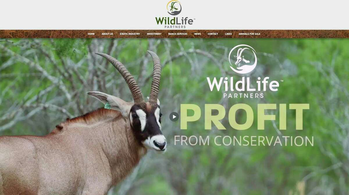 Wildlife Partners, which buys and sells exotic wildlife, has been sued by a former executive who wants a receiver to take over management of the company. Prospective investors can obtain investment materials from the company's website.