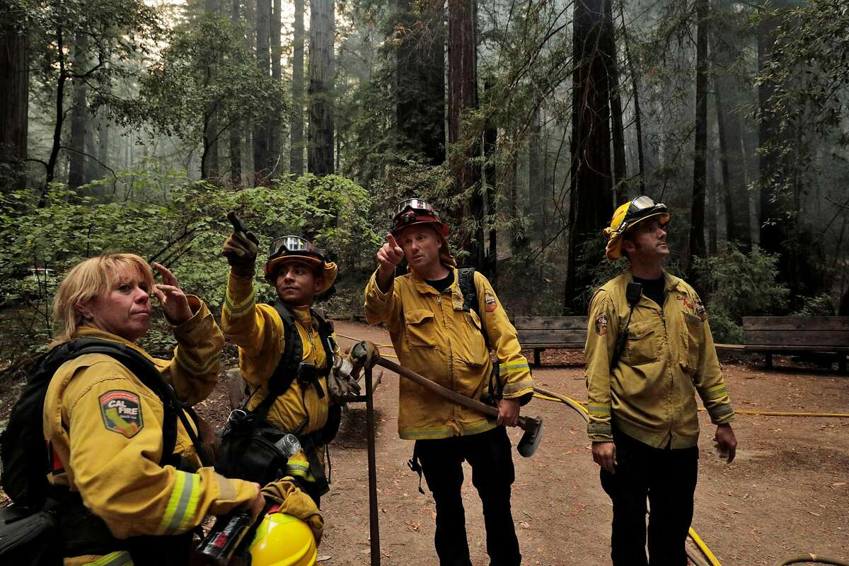Calfire firefighters discuss which trees are vulnerable after two giant redwoods fell near the Colonel Armstrong tree as they worked the Walbridge fire in Armstrong Redwoods State Reserve protecting the heritage trees in Guerneville, Calif., on Tuesday, August 25, 2020.