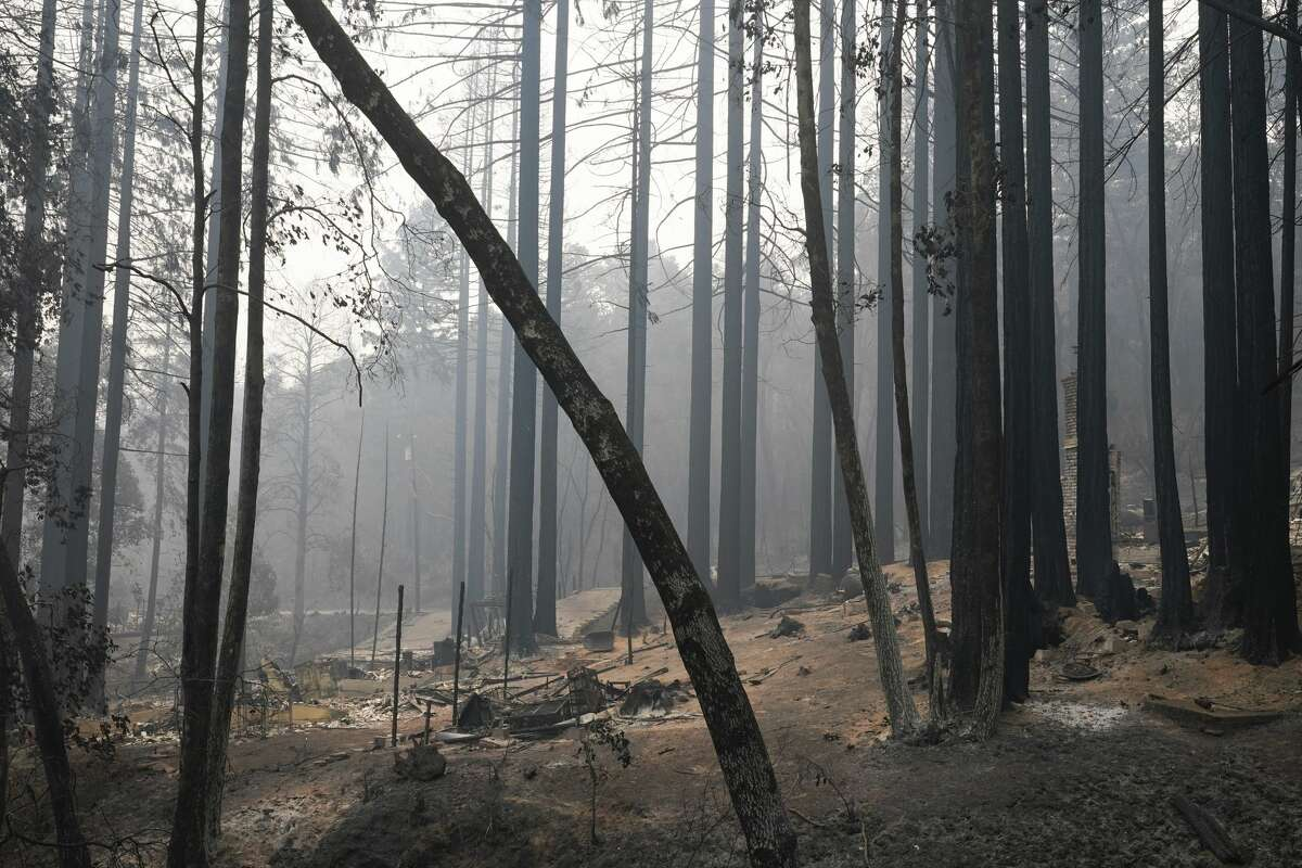 FILE -- A fire-ravaged neighborhood is seen Tuesday, Aug. 25, 2020, in Boulder Creek, Calif., after the the CZU August Lightning Complex Fire passed by.