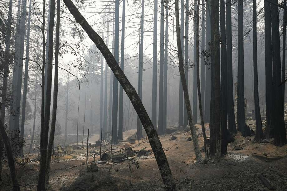 FILE -- A fire-ravaged neighborhood is seen Tuesday, Aug. 25, 2020, in Boulder Creek, Calif., after the the CZU August Lightning Complex Fire passed by. Photo: Marcio Jose Sanchez/Associated Press / Copyright 2020 The Associated Press. All rights reserved.