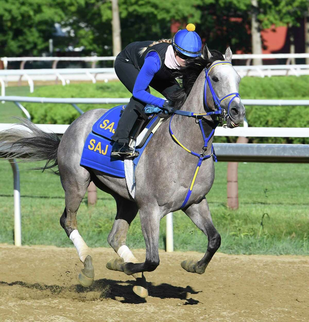 Exercise rider Sabine Lanvad takes Kentucky Derby hopeful NY Traffic for a gallop around the main track Wednesday Aug.26, 2020 at the Saratoga Race Course in Saratoga Springs, N.Y. Photo by Skip Dickstein/Special to the Times Union