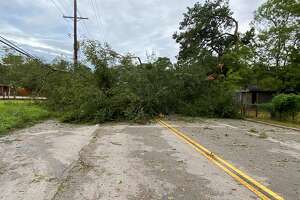 A large tree down blocks Delaware Road  just past Nineteenth Street. When it fell it took down some power lines. About 70 thousand residents in Southeast Texas woke to no power Thursday morning.