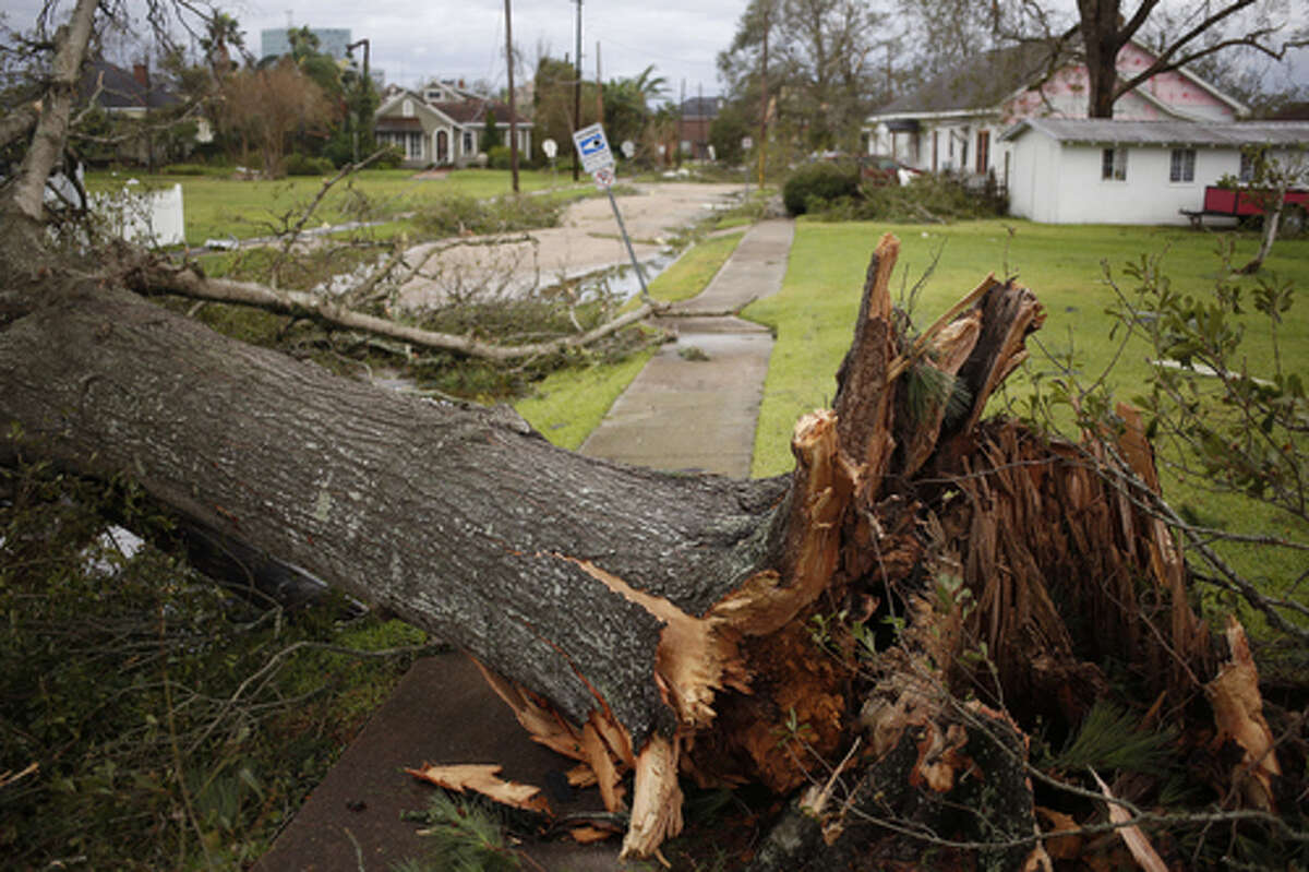 An uprooted blocks a sidewalk after Hurricane Laura made landfall in Lake Charles, Louisiana, U.S., on Thursday, Aug. 27, 2020. Hurricane Laura raked across Louisiana early on Thursday, becoming one of the most powerful storms ever to hit the state with a