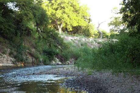 Brushy Creek, a 69-mile stream that runs through Williamson County, is a serene setting for a day of searching for rare Guadalupe bass.