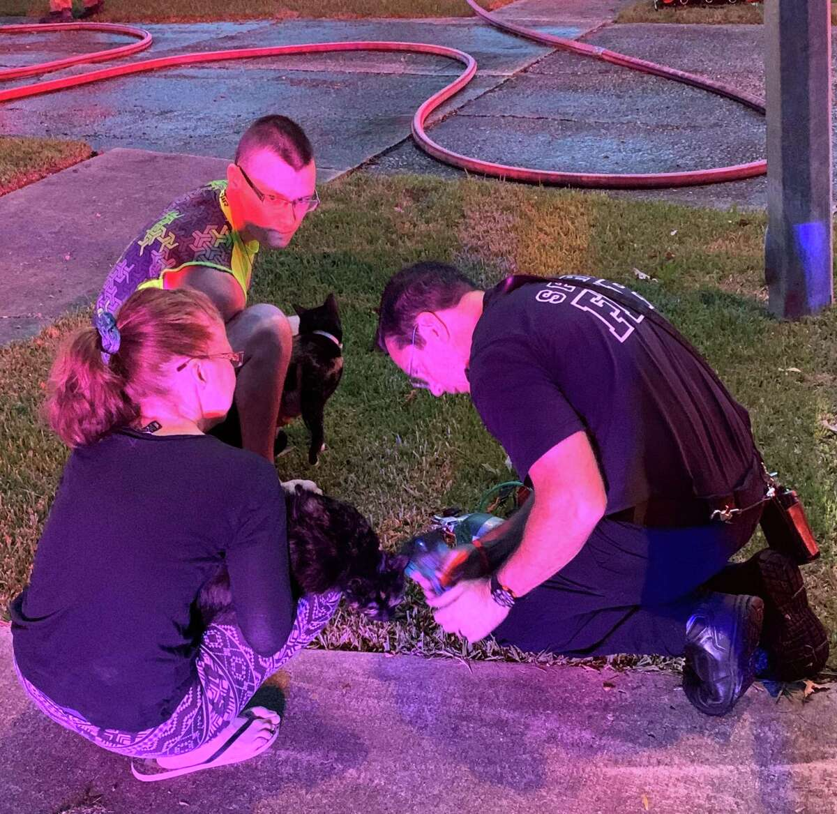 Spring Fire DepartmentApparatus Operator Mark Hutchison administers oxygen to a cat at the scene of a house fire in theGreengate Place subdivision on Aug. 27, 2020.