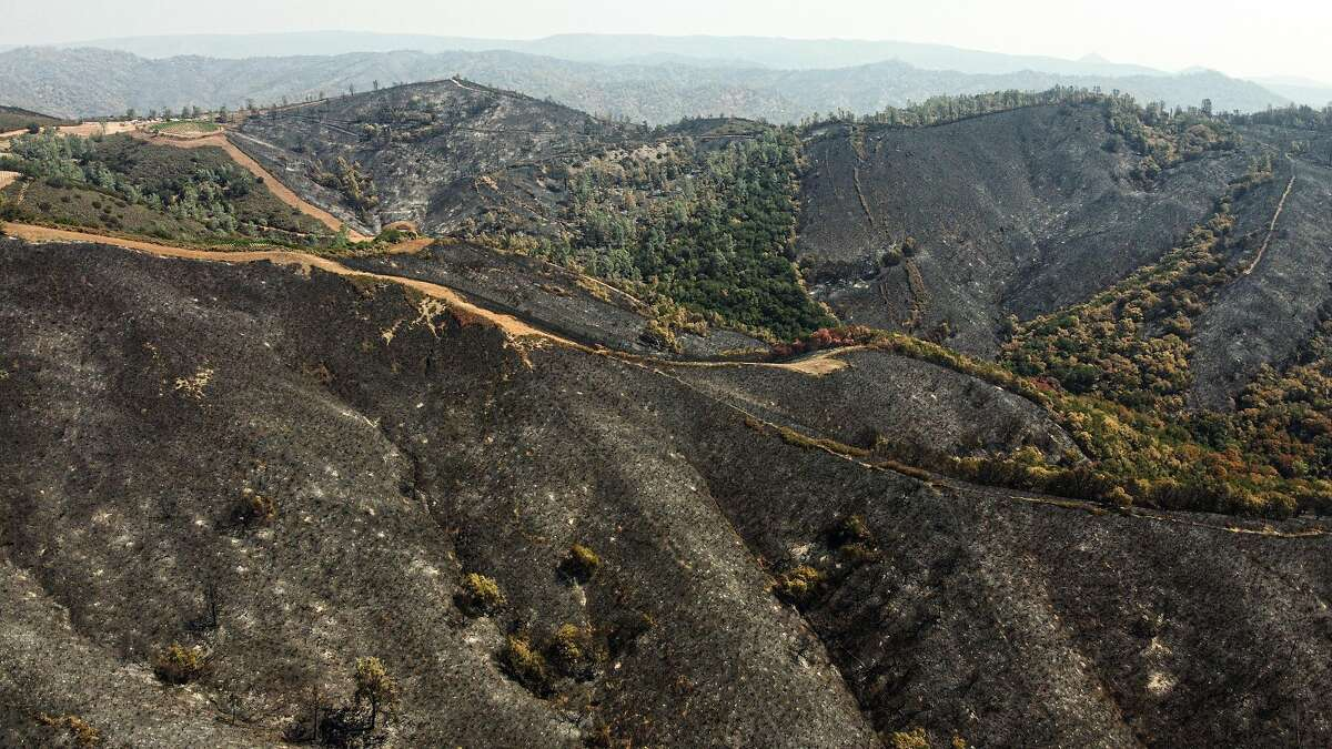 The burned area nearing the end of Hennessey Ridge Road, Thursday, Aug. 27, 2020, in Napa County, Calif. The LNU Lightning Complex fires are 35% contained and have been active for 10 days, according to CalFire's latest report Thursday. The fires have burned more than 370,000 acres.