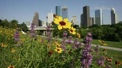 Gerald Hines did much to influence the Houston skyline.