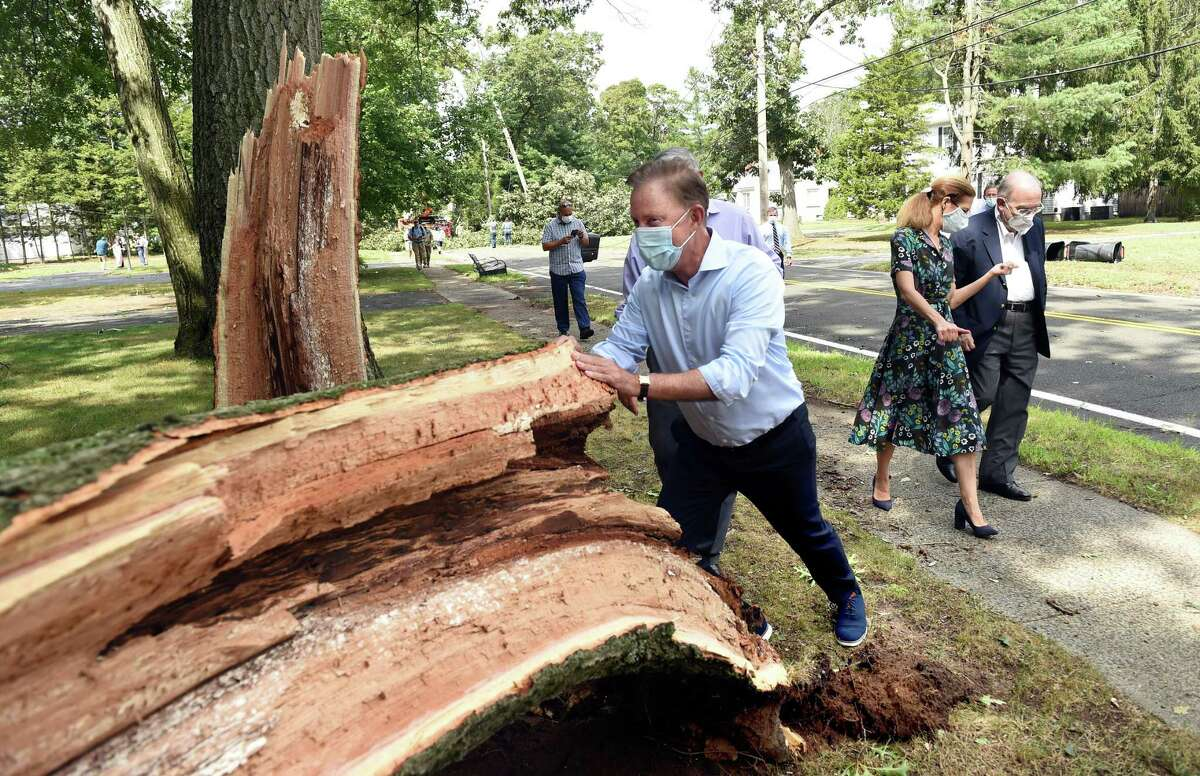 Gov. Ned Lamont pushes on a downed tree in jest while touring storm damage on Laydon Avenue in North Haven on August 28, 2020.