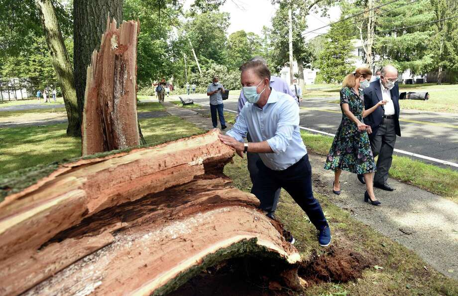 Gov. Ned Lamont pushes on a downed tree in jest while touring storm damage on Laydon Avenue in North Haven on August 28, 2020. Photo: Arnold Gold / Hearst Connecticut Media / New Haven Register