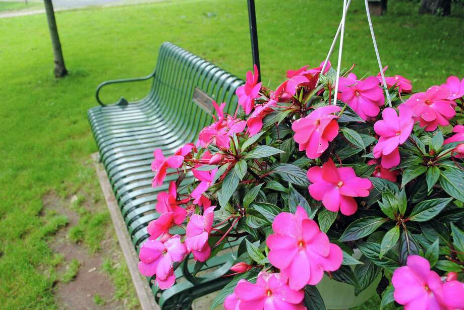 A hanging plant decorates one of the many benches along the Linear Trail, Cheshire's portion of the Farmington Canal Heritage Trail, made in memory of someone. Photo: Hearst Connecticut Media File