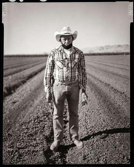 Pablo, age  67. Farmworker planting organic cantaloupe melon at Del Bosque Farms. Firebaugh, California. Tuesday, June 9, 2020. Photo: Gabrielle Lurie / The Chronicle