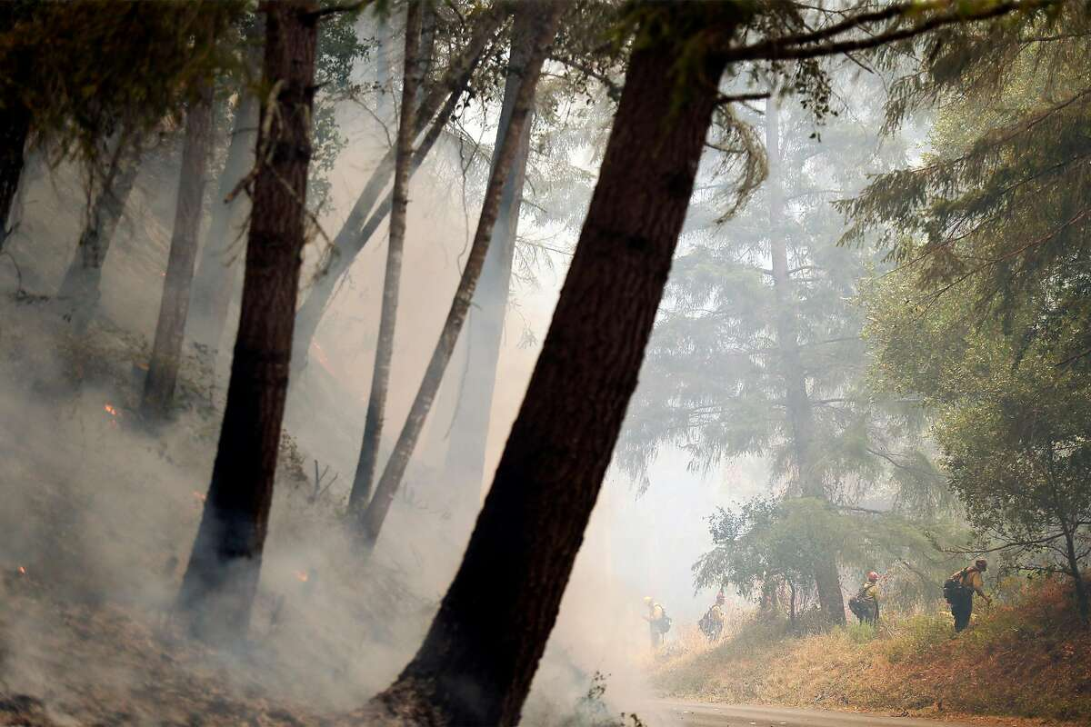 Forest Service firefighters conduct a firing operation as the Woodward Fire burns at Point Reyes in August.