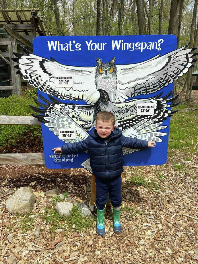 Jase Bradshaw of Ridgefield spreads his wings near the bird enclosures at Woodcock Nature Center. The new sign shows the spirit, if not the actual design, of new educational signs Woodcock is hoping to add to its trails. Photo: Contributed Photo / Woodcock Nature Center / Wilton Bulletin Contributed
