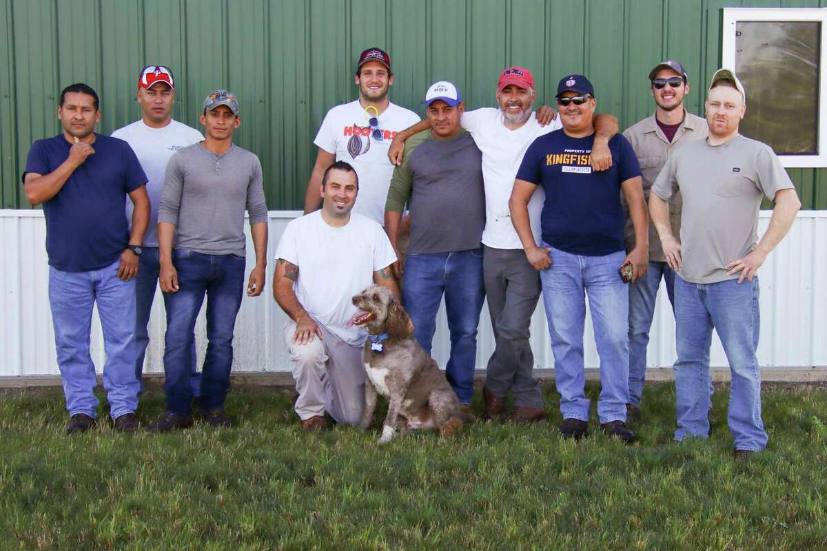 McCoy Apiaries in Minden City employs 12 to assist brothers and co-owners Shawn, Brett and Ryanin tending to the 11,000 hives the company maintains. (Scott Nunn/Huron Daily Tribune)