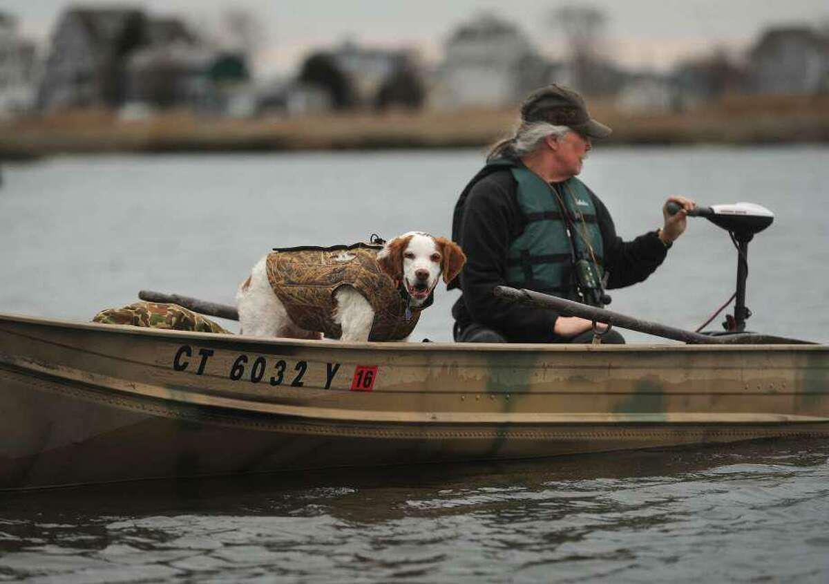 A Shelton man and his dog go out hunting for goose on the Housatonic Marsh in Milford, Conn., taken on Monday, Feb. 1, 2016.