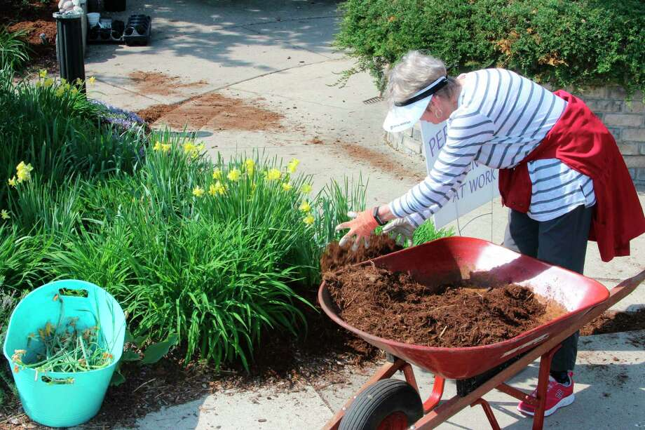 The Periwinkle Garden Club of Frankfort is hosting a virtual plant sale to help raise money for their activities, which includes keeping up parks and gardens in Frankfort. (File Photo)