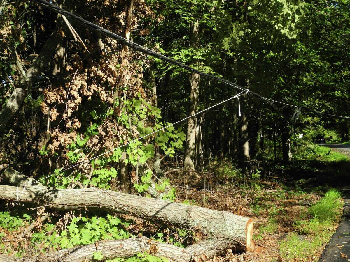 A wire is tied to a downed tree to keep if from hanging too low over Hickory Hill Road on Aug. 30.