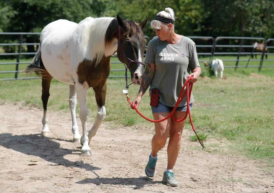 Navy veteran Regina Fulton takes out her American Painter Horse, Fred, at Henry's Home, Tuesday, Aug. 18, 2020, in Conroe. The nonprofit organization, which provides equine therapy sessions for veterans, is partnering with Tri County Behavior Health to help veterans with various health services. Photo: Jason Fochtman, Houston Chronicle / Staff Photographer / 2020 © Houston Chronicle