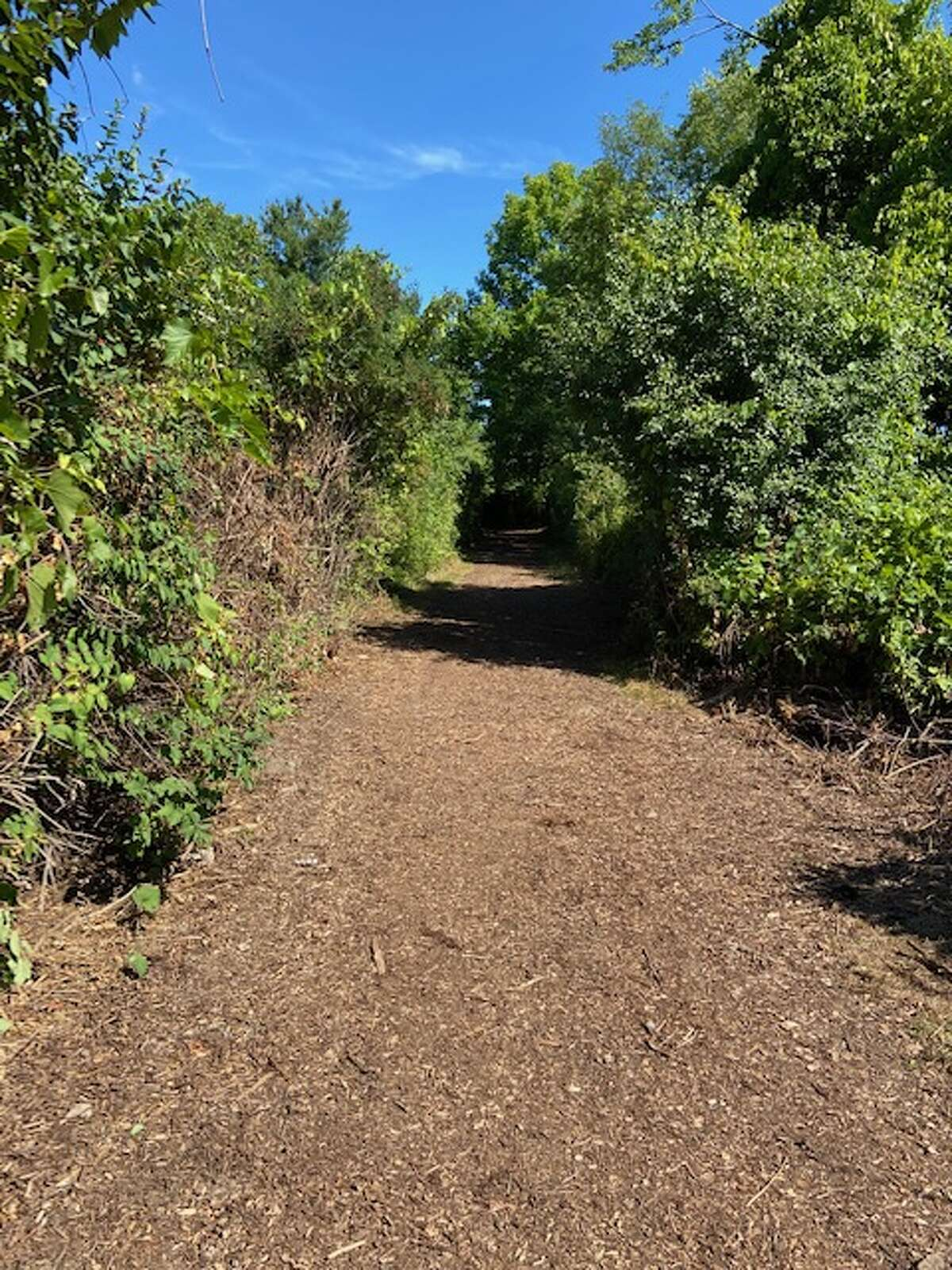Community Partners of Greenville, Iroquois Gas Transmission System and the town of Greenville recently completed improvements to the Vanderbilt Park trail system. (Provided photo)