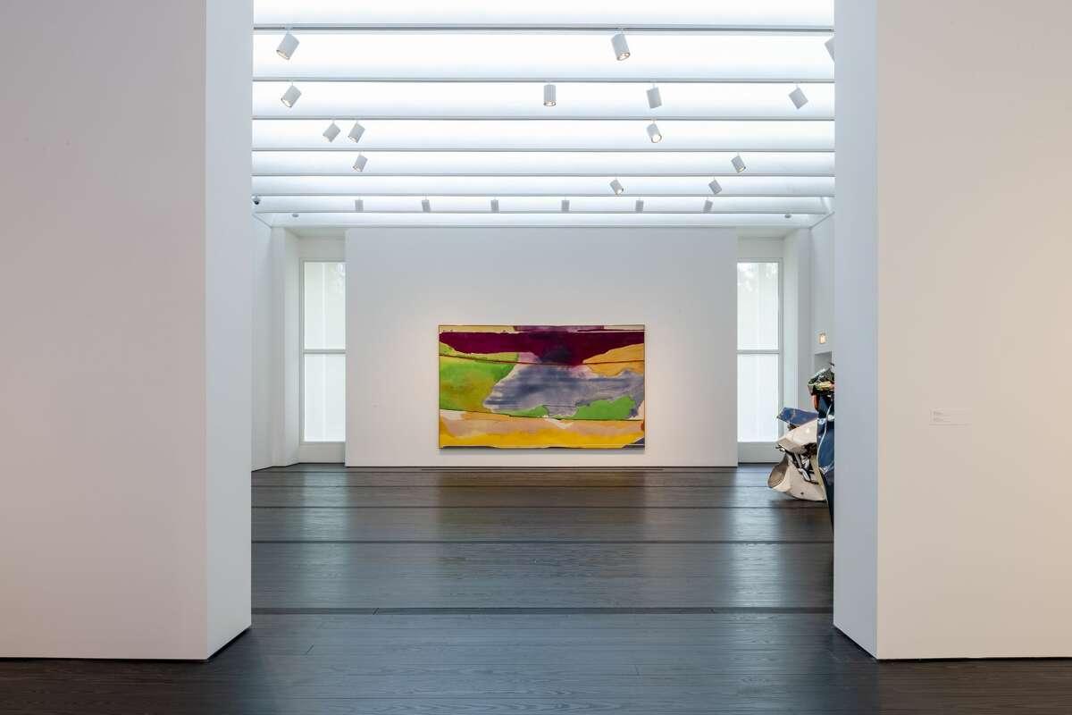 Installation view of Helen Frankenthaler, Hybrid Vigor, 1973.