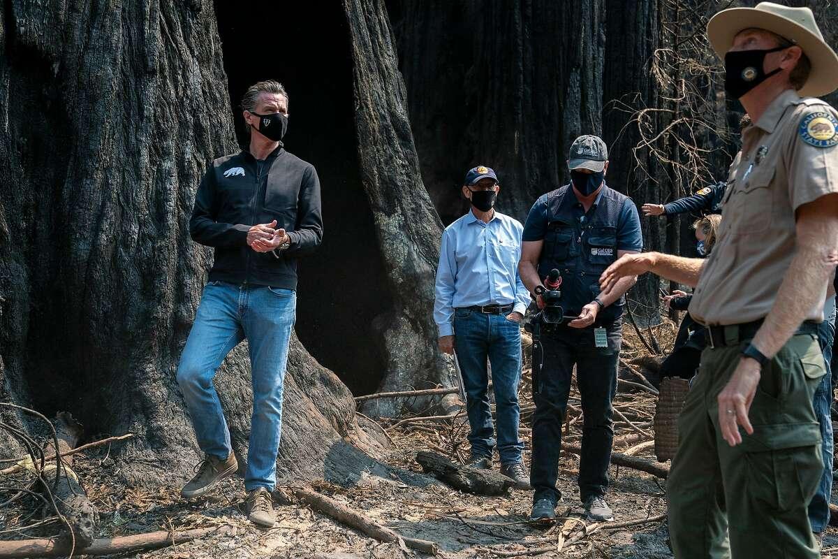 Gov. Gavin Newsom and park Superintendent Chris Spohrer survey fire damage in September at Big Basin Redwoods State Park.