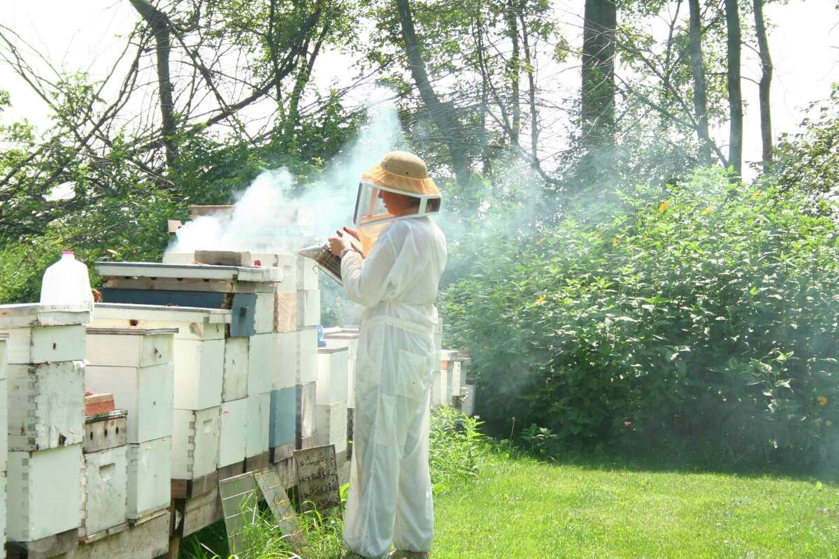 Jodie Kieliszewski is smoking the bees out before she checks the hives over. The bees fly away from the smoke so it makes working on the hives easier. (Courtesy Photo)