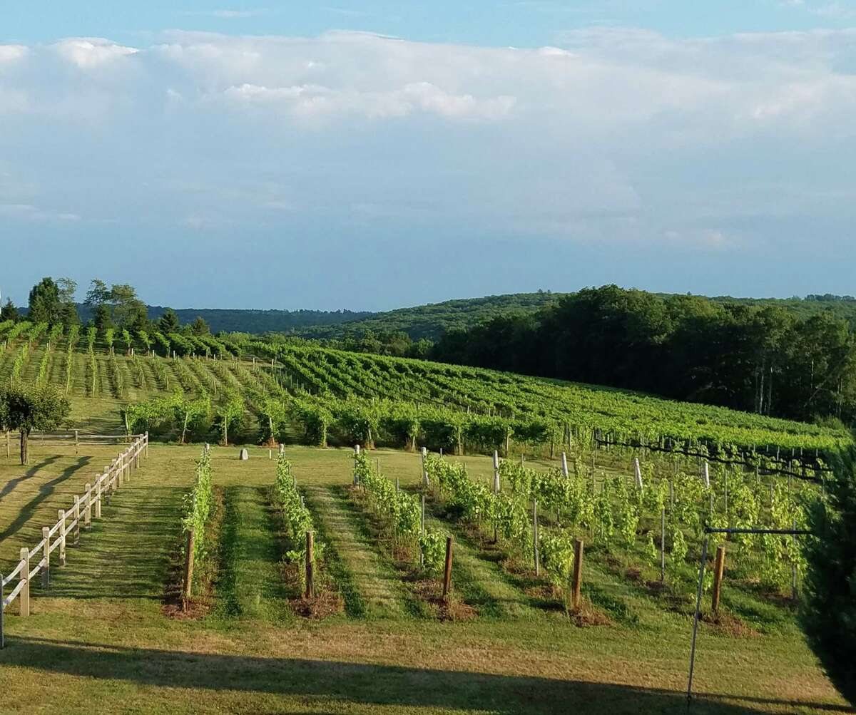 The Goshen Business Circle is promoting businesses and activities in town over the Labor Day weekend. Above, a view of a local vineyard.