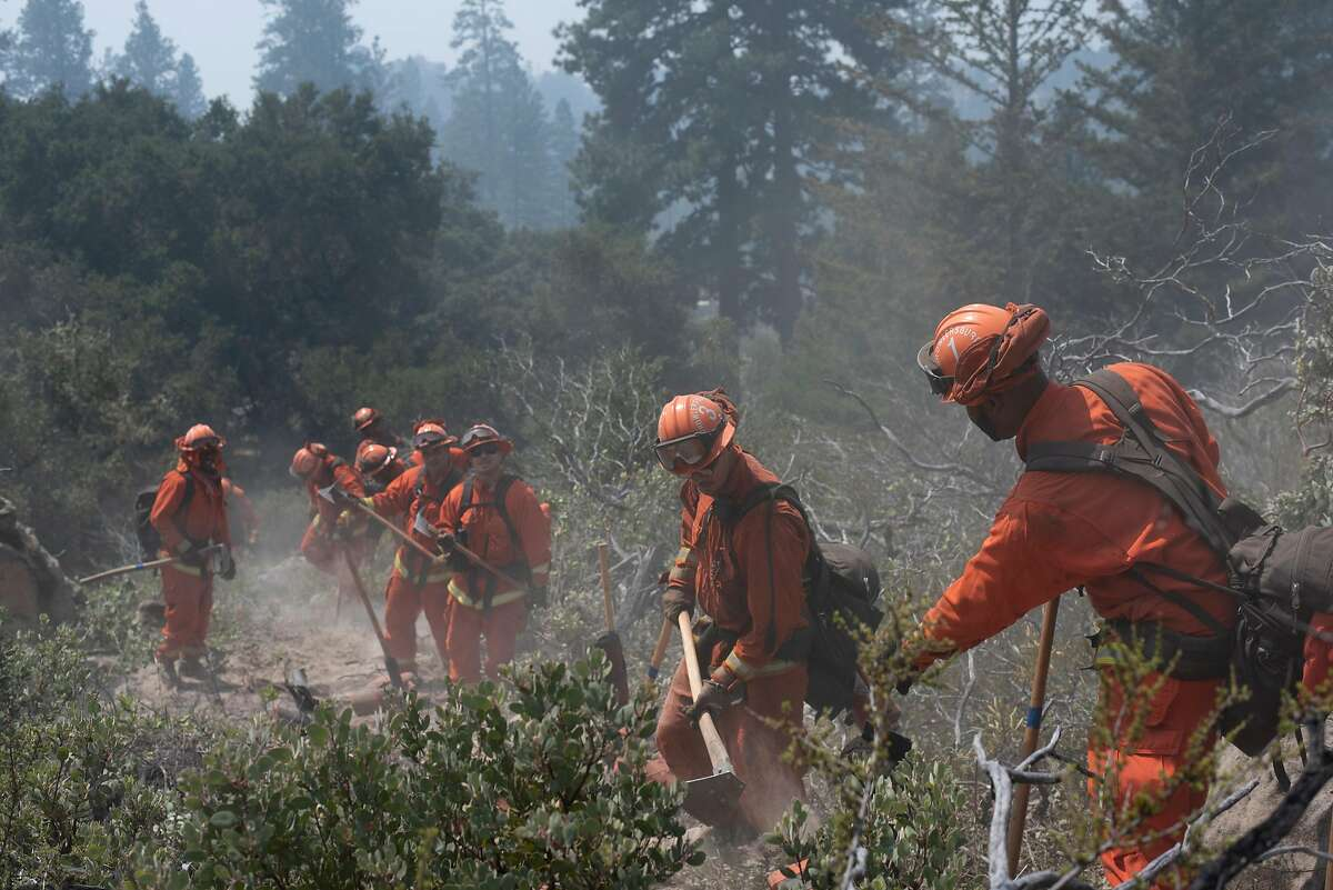The Camp Growlersberg inmate hand crew clears a preventative fire break in Boony Doon , Calif. on Aug. 27, 2020. This kind of preventative work is crucial in managing future wildfires.