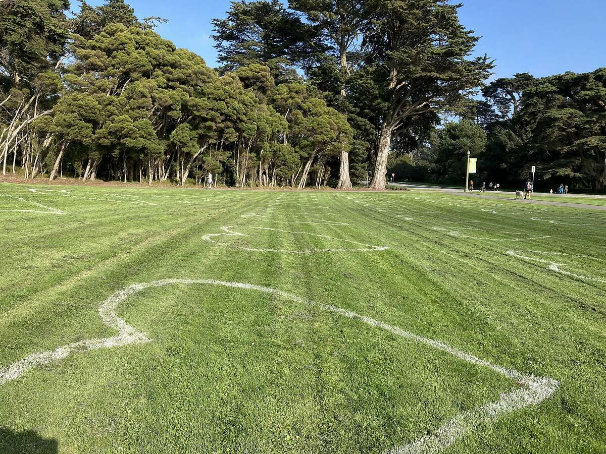 painted social distance hearts on the Conservatory of Flowers lawn in Golden Gate Park