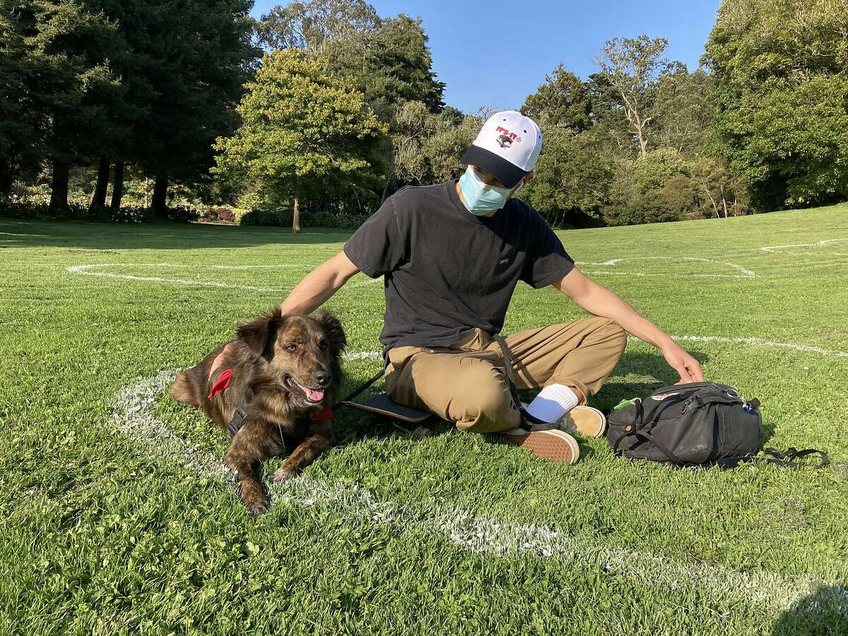 Joey Schaefer and his dog, Winslow, share a painted social distance heart on the Conservatory of Flowers lawn in Golden Gate Park