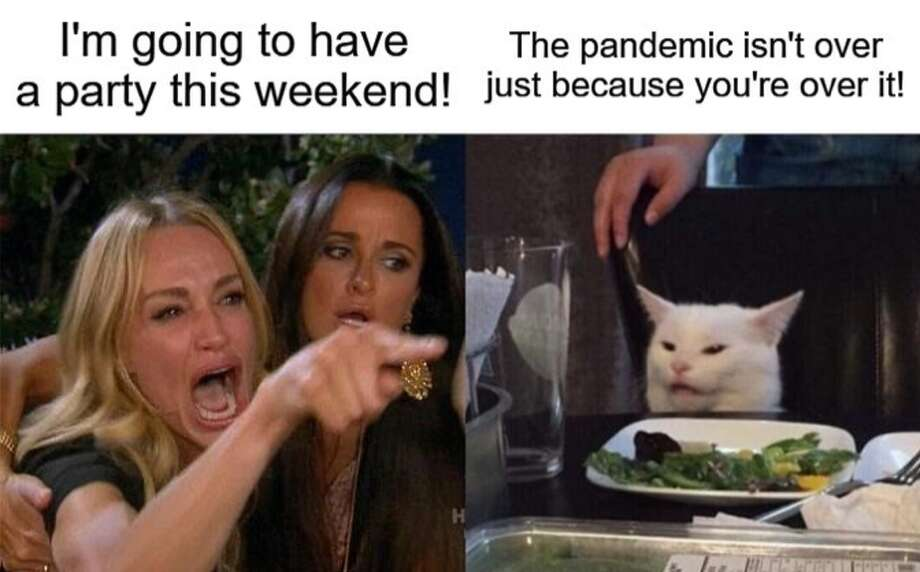 """The city's official social media pages added an extra level of support with some levity in the form of the confused cat meme. The split screen photo shows the Real Housewives of Beverly Hills cast member Taylor Armstrong with text saying """"I'm going to have a party this weekend."""" On the other end of the table, or meme, is the cat with the caption """"The pandemic isn't over just because you're over it."""" Photo: City Of San Antonio"""