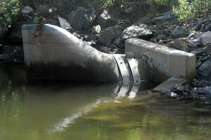 A Combined Sewer Overflow (CSO) in Yellow Mill Creek in Bridgeport on Friday.