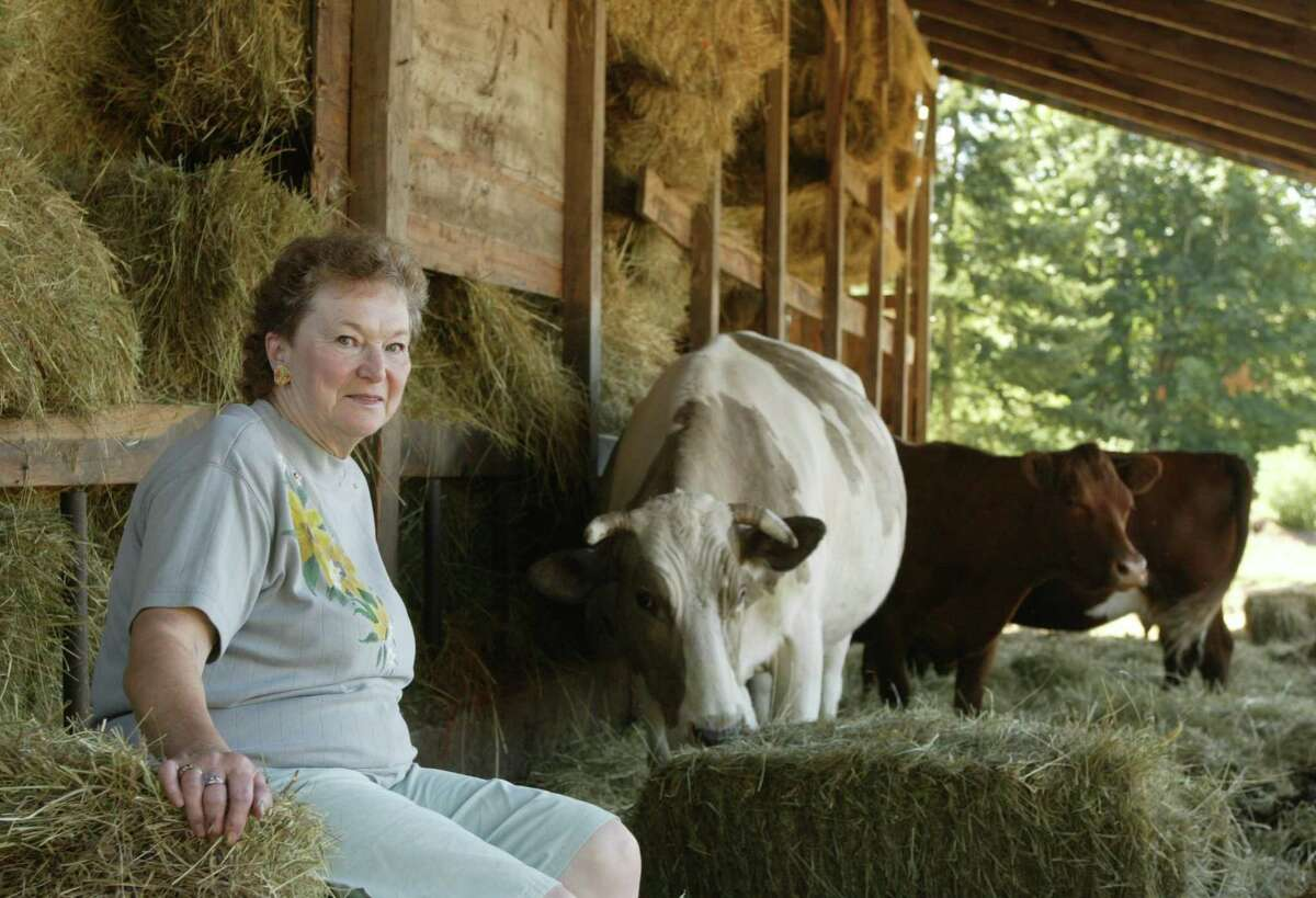 7/16/04 boeing bizz Carol Jensen takes a break after feeding some of her and husbands heard of 55 Beefalo (cq) on there farm on Camano Island.