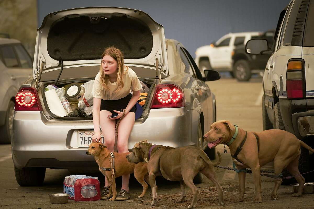 Kelsey Mueller, 16, of Armona, Calif., pets her dogs while waiting with her family to be escorted from the mountain as the Creek Fire burns nearby Monday, Sept. 7, 2020, in Shaver Lake, Calif. (AP Photo/Marcio Jose Sanchez)