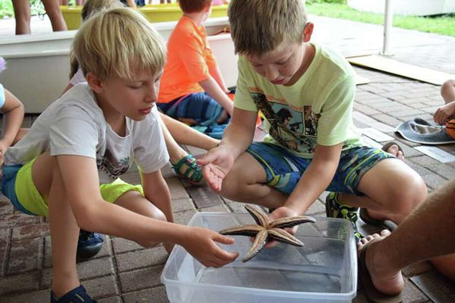 SoundWaters begins afterschool fall adventure programs. Photo: Michael Bagley, SoundWaters