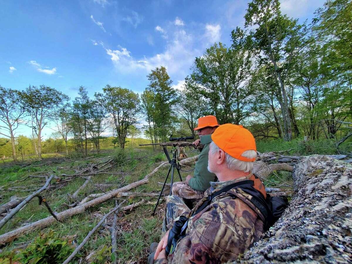 Writer Tom Lounsbury (background) and elk guide John Jones keep an evening vigil for elk on atimbered hillside near Atlanta. (Photo by Jake Lounsbury)