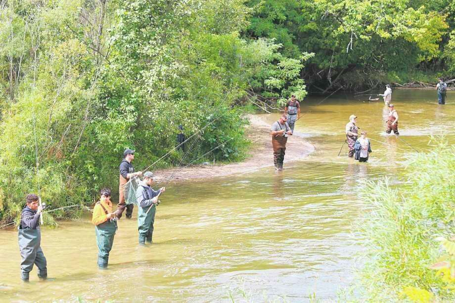 Fishermen line the banks of the Betsie River in late summer , as anglers flocked to Benzie to try and catch salmon as they migrated upstream to spawn. (File photo)