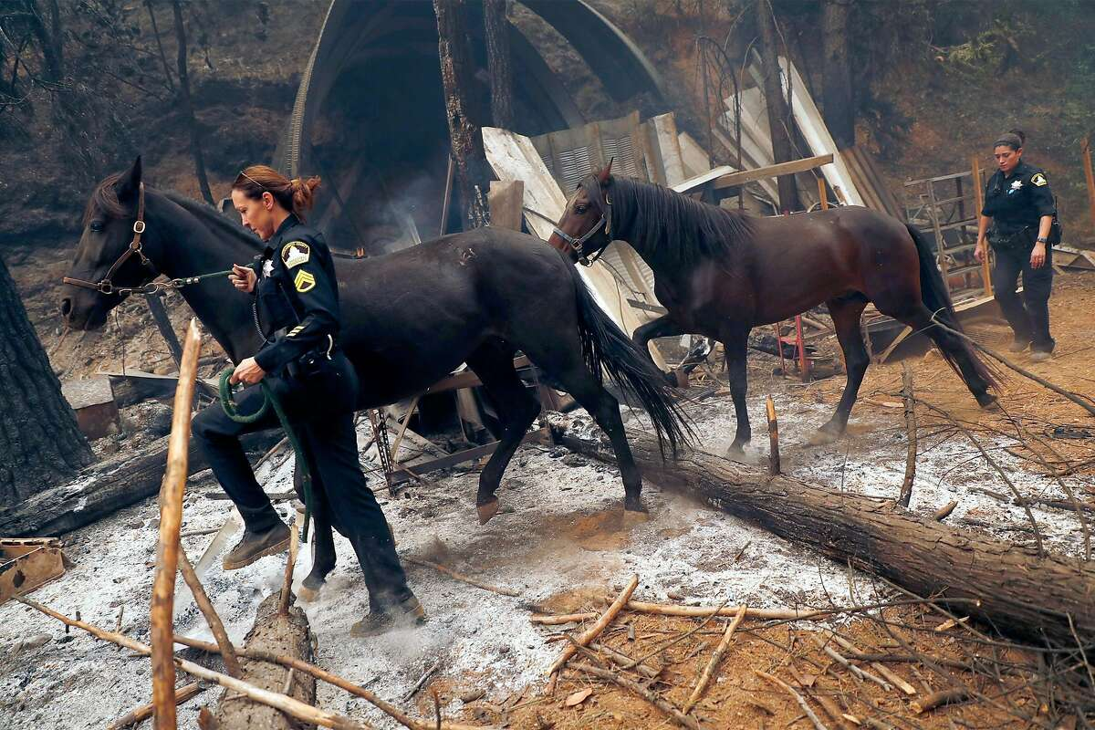In the wreckage of a homesite along Oroville Quincy Highway, Sacramento County Deputy Sheriff's Christie Lynn (left) and Bianca Reeve rescue a mare and her colt walks during North Complex West Zone Fire in near Berry Creek, Calif., on Thursday, September 10, 2020.
