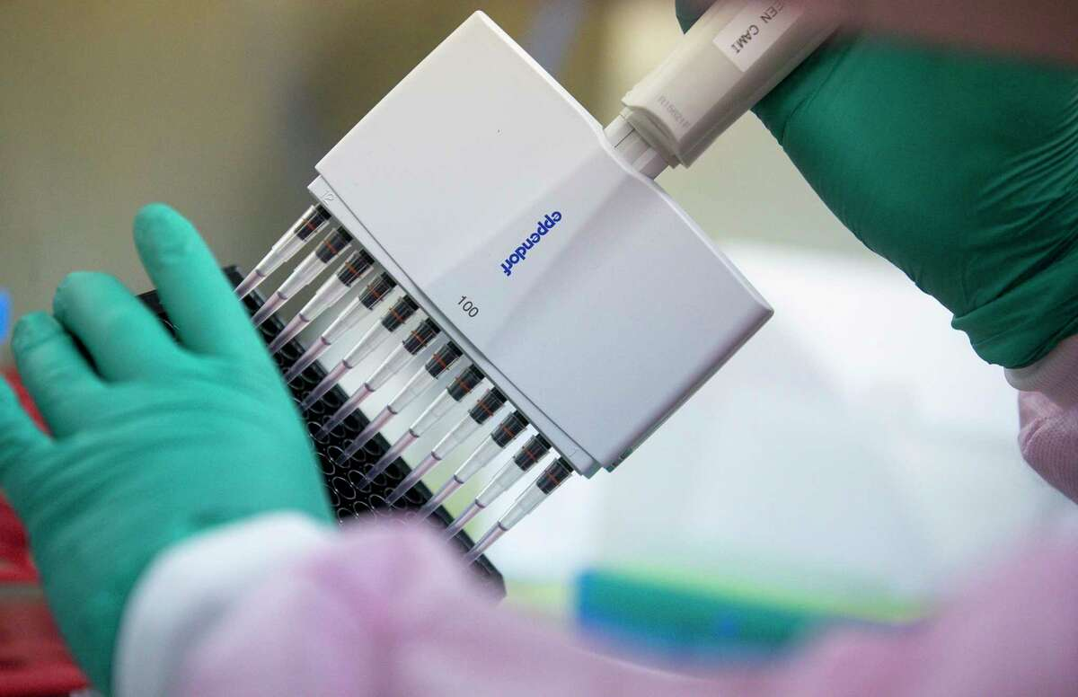 Camila Fontes uses a multi-channel pipette to put cells into plates so they can later be infected with Coronavirus, inside a vaccine research lab at University of Texas Medical Branch at Galveston on Thursday, June 18, 2020, in Galveston, Texas.