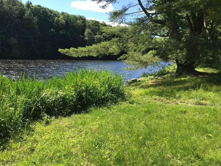 New Canaan Land Trust (NCLT) and the Norwalk River Watershed Association (NRWA) are encouraging public participation in an online hearing regarding plans for significant construction at the Grupes Reservoir along the Silvermine River in New Canaan. Photo: Contributed / The New Canaan Land Trust
