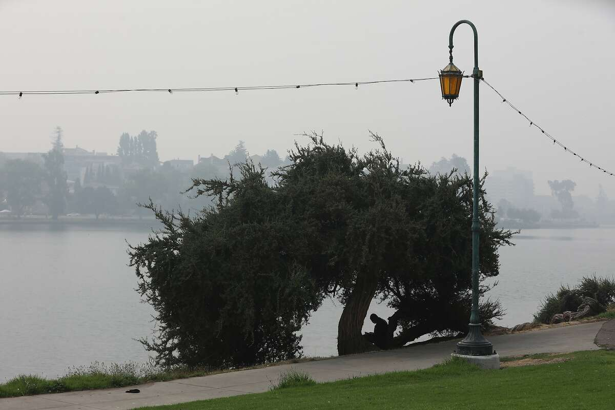 A man who didn't provide name relaxes under a tree at Lake Merritt under a hazy sky due to multiple wildfires on Friday, September 11, 2020, in Oakland, Calif. The air quality is very unhealthy in areas of the Bay Area.