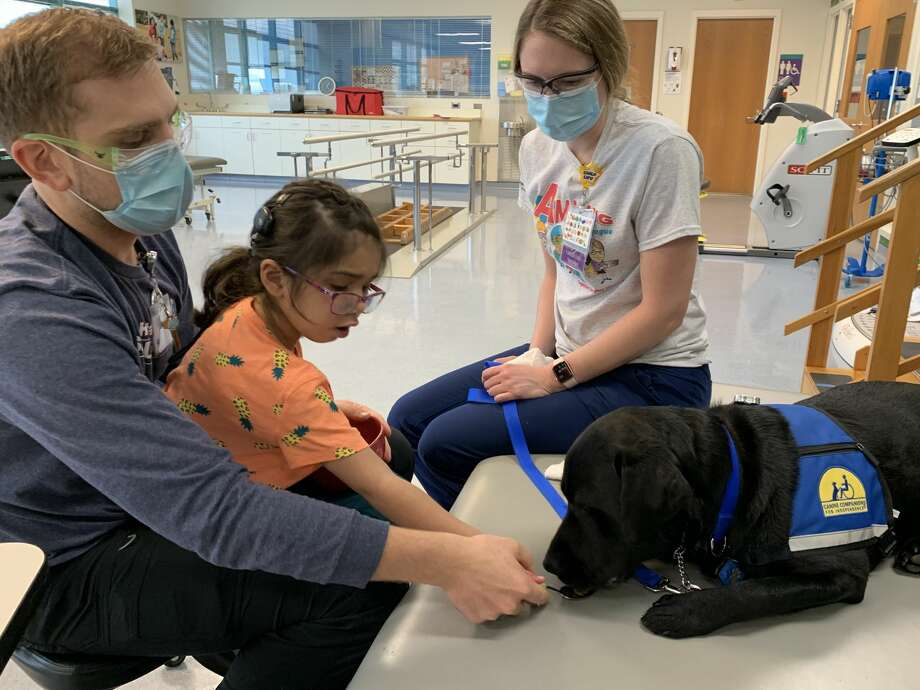 Shriners Hospital for Children-Houston announced on Thursday that it has welcomed its first facility dog. Photo: Courtesy