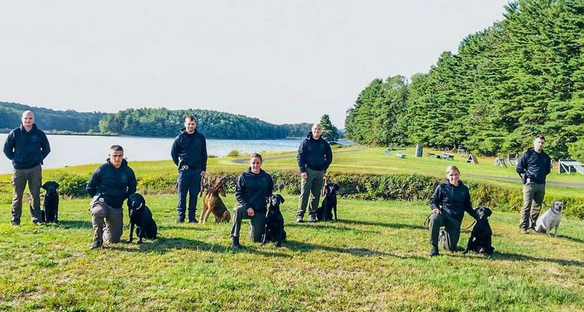 Among the names of new tracking K9s that will help find missing - or wanted - people are Karma, Nikko, GiGi and classic canine name, Rex. On Friday, Sept. 11, 2020, the Connecticut State Police 215th Tracking K9 Class graduated seven new teams.