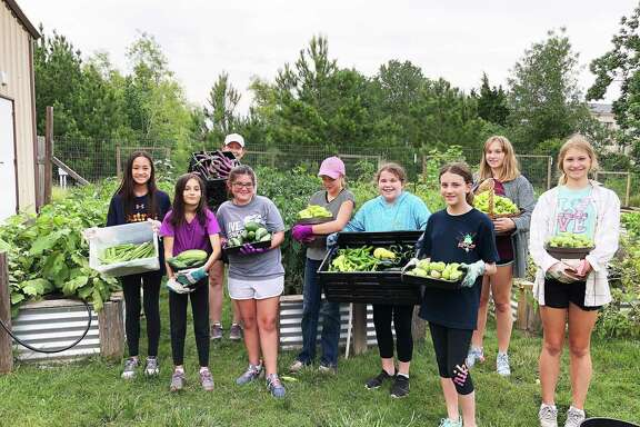 Volunteers gather crops from the garden for CyFair Helping Hands before the pandemic hit.