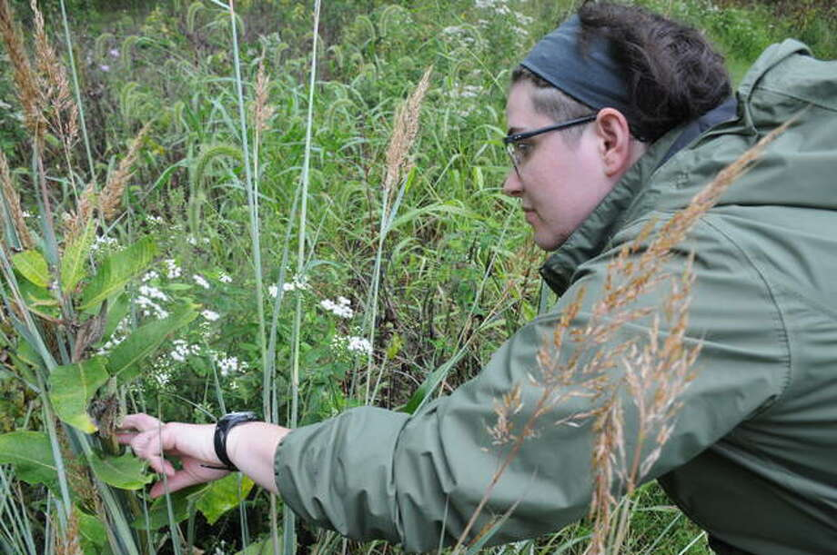 Emily Ehley of The Nature Institute searches for uniquer plant species to document during Backyard Biodiversity Weekend. The event continues Sunday, both in Godfrey and virtually through the use of a smartphone app.
