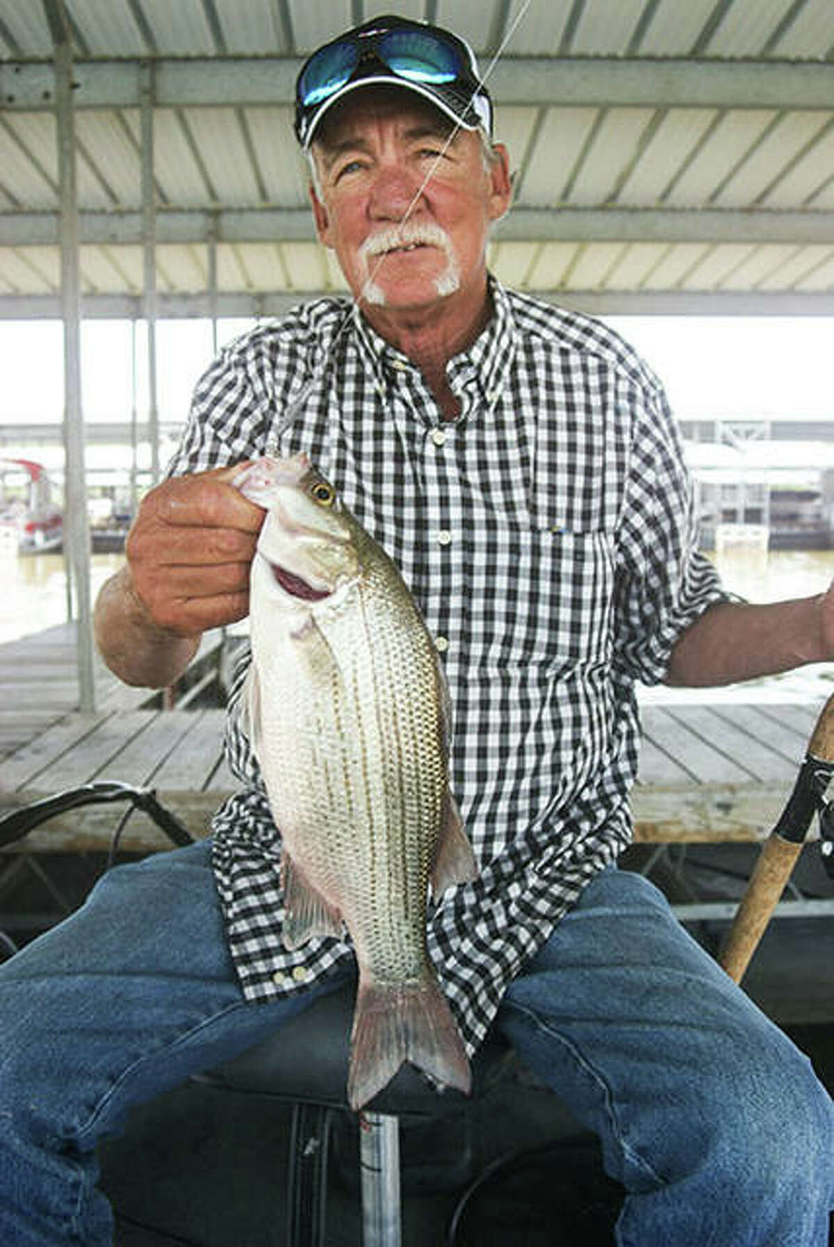 Fall is the best time of year to put together a stringer of really nice white bass.