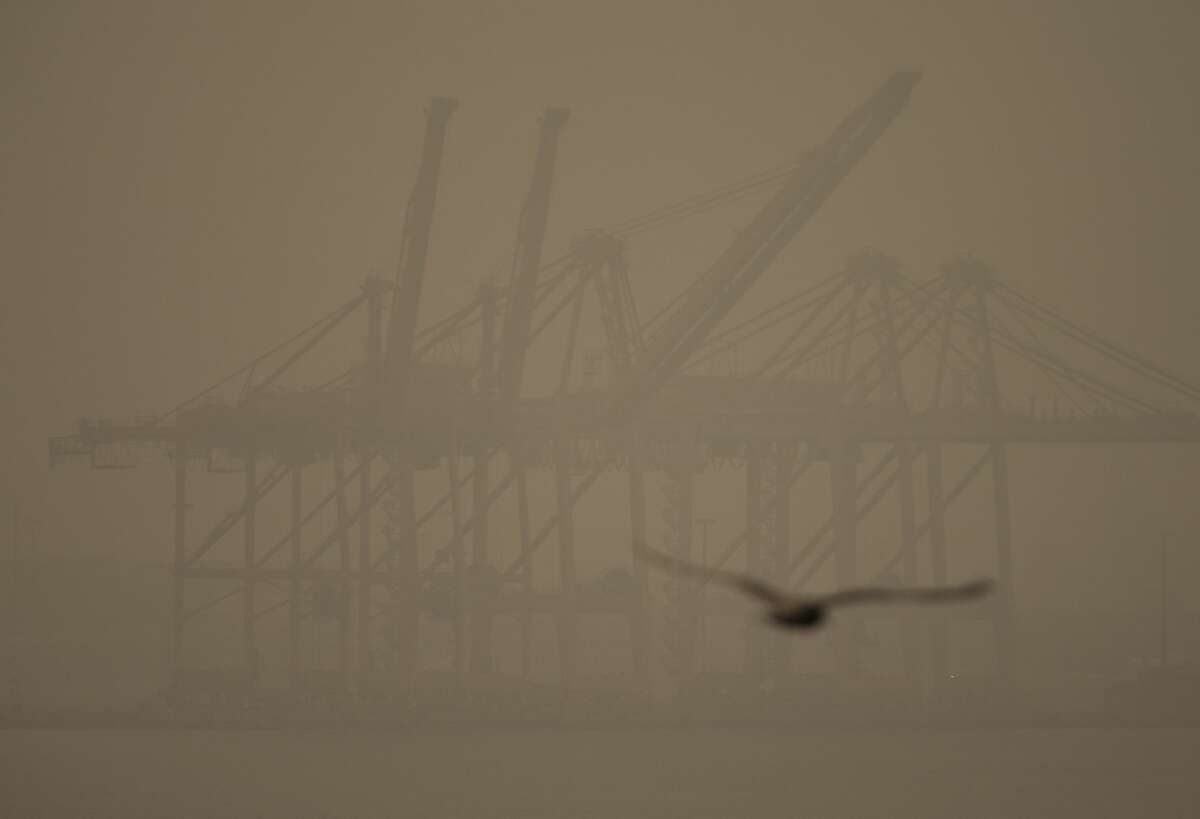 A seagull flies past cranes on Harbor Island as smoke from wildfires fills the air on September 12, 2020 in Seattle.